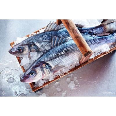 Рыба охлажденная и замороженная