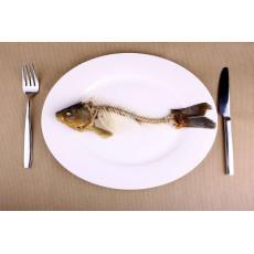 С чего больше отходов с рыбы или курицы