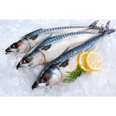 Свежемороженая рыба